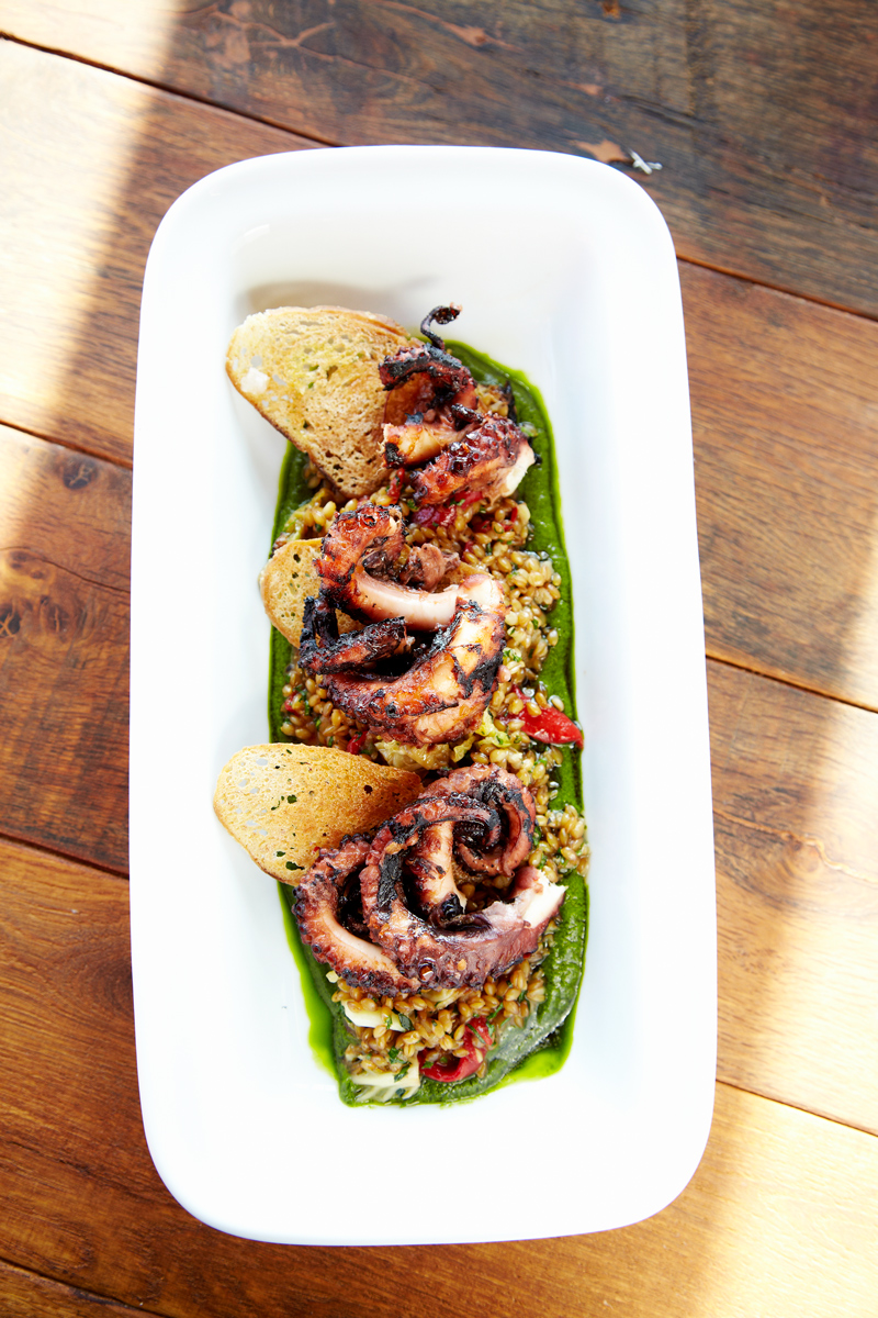 Grilled Octopus photo by Chris Kessler Photography.  Chris Kessler is a freelance Photographer based in Milwaukee Wisconsin. Specializing in Food photography and portraiture.